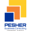 Pesher Business Consulting Limited
