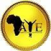 Africa's Young Entrepreneurs (A.Y.E) jobs in Nigeria