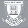 Baze University (INTERNAL AND EXTERNAL APPLICATIONS FOR VACANCIES) - Lecturers And Technicians
