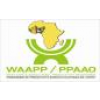 West Africa Agricultural Productivity Programme (WAAPP) jobs in Nigeria